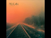 Pelican: The Cliff