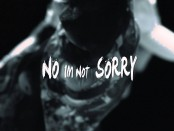 딘: I'm Not Sorry